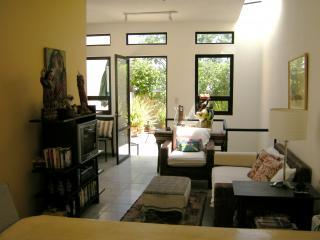 Casita Living Room & Terrace - Charming Casita in Historic Centro - San Miguel de Allende - rentals