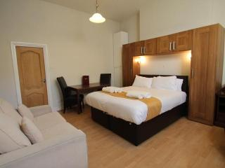 Castletown House Family London Studio Apartment - London vacation rentals