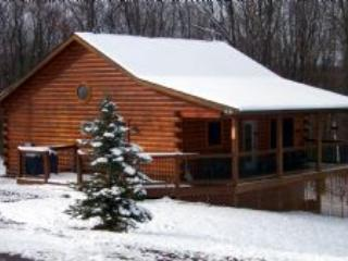 Bear Paws - cozy cabin, 1 mile to Deep Creek Lake - Image 1 - Oakland - rentals