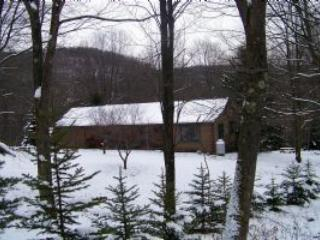 winter veiw of exterior - Log Cabin perched on Hilltop; WISP and Deep Creek - McHenry - rentals