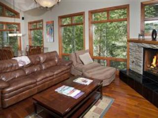 Intermountain Chalet - Vail vacation rentals