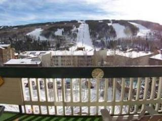 Vantage Point- 4 Bedroom - Vail vacation rentals