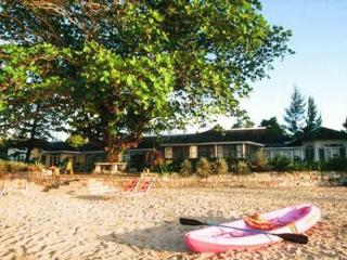 Siesta: Perfect Villa for Family and Friends - Treasure Beach vacation rentals