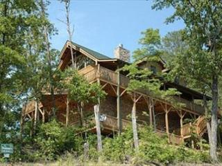 Absolutely Gorgeous Mountain Lodge with Total Privacy and Amazing Views!  MYS - Sevierville vacation rentals