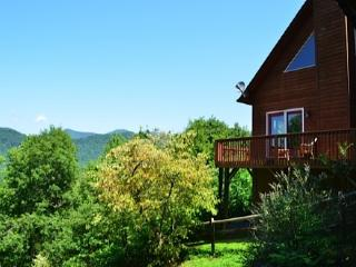 Sunset Haven - Swannanoa vacation rentals