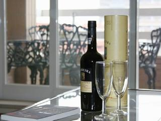 Contemporary condo apartment, balcony and parking - Porto vacation rentals