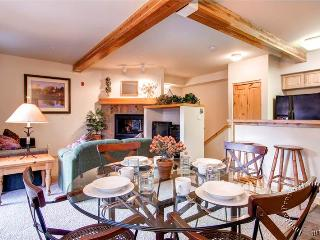Twin Elk Lodge 2 Bdrm Condo B5 (TWB5) - Breckenridge vacation rentals