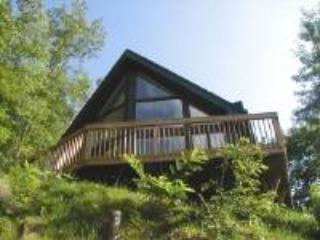 Black Forest Cottage - Bryson City vacation rentals