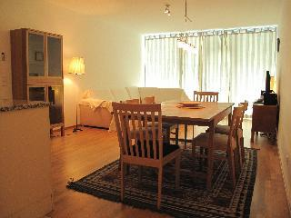 Vienna Centre Apartment Karlsplatz - Vienna City Center vacation rentals