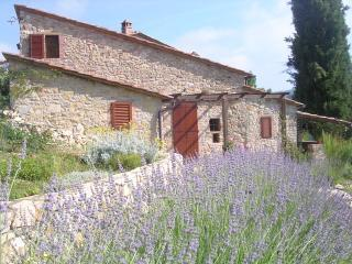 the Fienile cottage with lavender - Le Ripe in Chianti - Castellina In Chianti - rentals