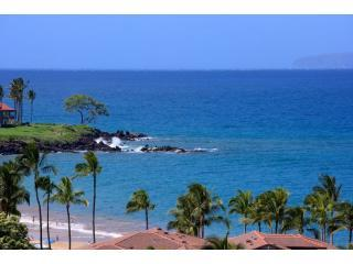 Luxurious Oceanfront Wailea Beach Villa - Wailea vacation rentals