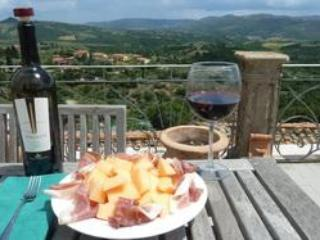 SOGNO PANICALESE LAST MINUTE  SEPTEMBER/OCTOBER 2014!!! - Panicale vacation rentals