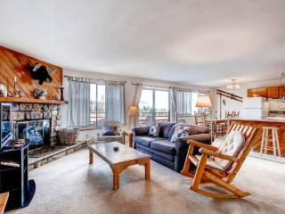 2 BR/2 BA Condo, mountain chic with spectacular views for 6 - Silverthorne vacation rentals