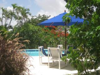 Carolita 1 Bed with Pool Nr Holetown - Holetown vacation rentals