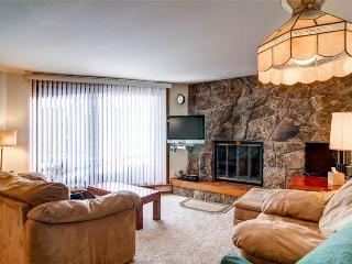 2 BR/2 BA, delightful condo, within walking distance to Lake Dillon Sleeps 7 - Dillon vacation rentals