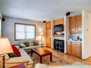 3 BR/ 3.5 BA stunning townhouse for 7, magnificent views and private hot tub - Silverthorne vacation rentals