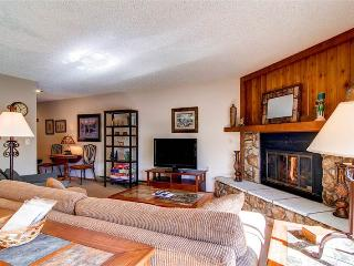 2 BR/ 2 BA single level walk up for 6, beautiful view from private patio, W/D in unit - Silverthorne vacation rentals