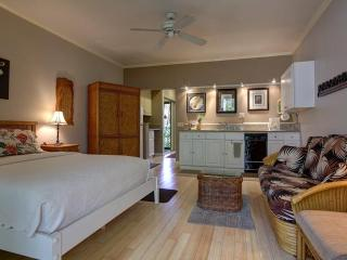 SPACIOUS LUXURY STUDIO FOR LESS - Wailea vacation rentals