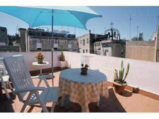 Sunny terrace - Apartment with terrace in Old Town, city center Barcelona - Barcelona - rentals
