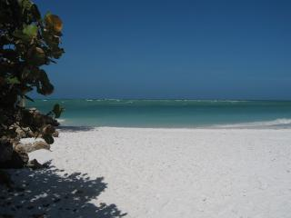 Sugar White Sandy Beach, Aqua Blue Water - Waterfront, SeaView, Close to Beach & Restaurants - Anna Maria - rentals