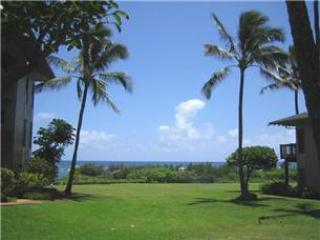 Kaha Lani Resort #114 - OCEANVIEW, Newly remodeled - Lihue vacation rentals