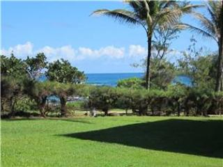 Kaha Lani Resort #129-OCEANVIEW, COMP WIFI! - Kapaa vacation rentals