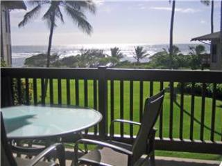 Kaha Lani Resort #214-OCEANVIEW, W/D & Comp WIFI! - Kapaa vacation rentals
