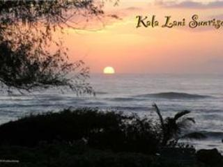 Kaha Lani Resort #311-OCEANVIEW, 2nd Fl, end unit! - Kapaa vacation rentals