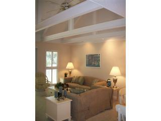 Living Room with exposed beam ceilings! - 2011-12-13 Top HHI Award Winner! Unbeatable! - Hilton Head - rentals