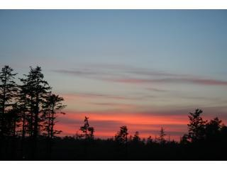 Gorgeous and serene Ucluelet sunsets - Bella Tramonto - Your Pacific Rim Oasis - Ucluelet - rentals