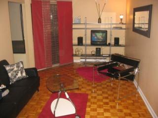Montreal Downtown - Montreal vacation rentals