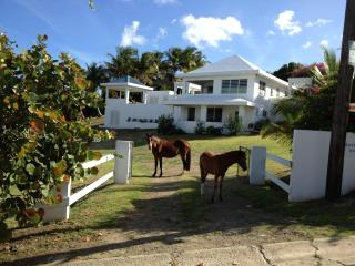 Bravos House Vieques Waterview Villa with Pool - Vieques vacation rentals