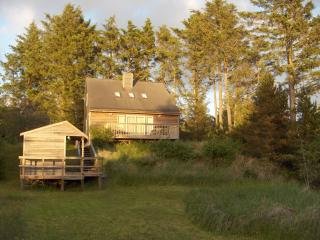 Beachfront Oceanview w/ Private Path to the Beach - Southern Washington Coast vacation rentals