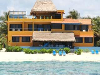 $1000/wk 3 BR Beach Villa With Cook, Pool, WiFi - Tulum vacation rentals