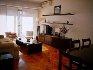 2 bedroom apartment in Recoleta district - Bill2 - Buenos Aires vacation rentals