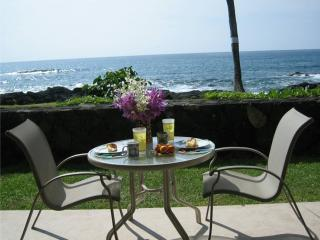Imagine eating your breakfast here everyday! - 30 FT FROM THE OCEAN! Ground Floor, Free A/C, WiFi - Kailua-Kona - rentals