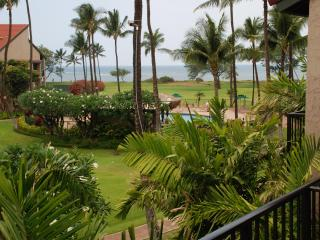 SEPT/OCT  OPEN!!OCEANFRONT/OCEAN VIEW,WIFI,POOL!! - Kihei vacation rentals