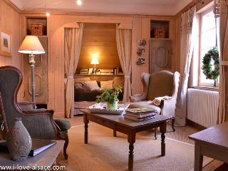 Between Strasbourg & Colmar, with a mountain view - Alsace vacation rentals