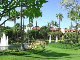Kamaole Sands 1 bedroom networking owner - Kihei vacation rentals