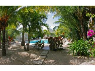 Palms trees and serenity - Affordable Turks & Caicos 1 Bed at Grace Bay Place - Grace Bay - rentals