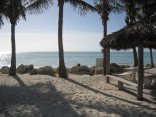 HURRY $900 wk.! 2 dogs/2 beaches/65' Pool/30'Dock - Key Colony Beach vacation rentals