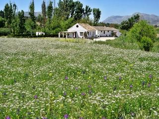 Beautiful self-catering holiday lets near Ronda - Ronda vacation rentals