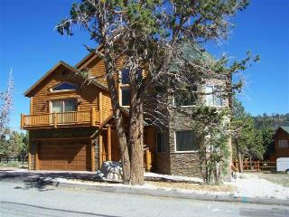 Bear Loop Castle - Big Bear Area vacation rentals