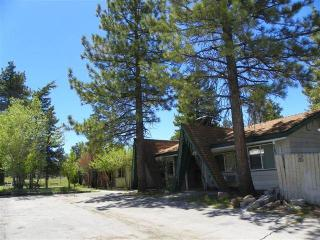 Big Bear Cozy Cabin 2 - Big Bear Lake vacation rentals