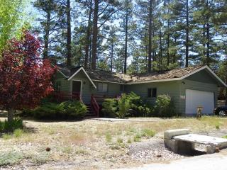 Snowridge - Big Bear City vacation rentals