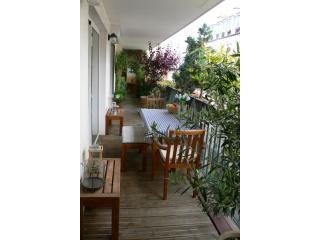 Great 2BR 1BA (+terrace) Rue Duhesme - apt #200 - Paris vacation rentals