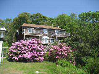 Panoramic ocean views, steps to beach & bike path - Falmouth vacation rentals