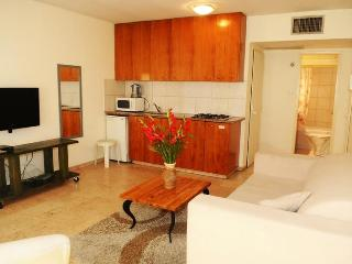 At Tel Aviv Dizengoff Beach Vacation Apartments - Israel vacation rentals