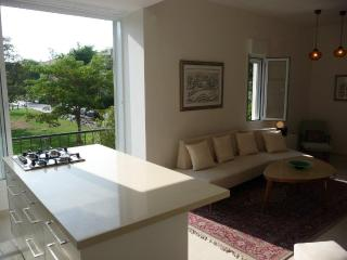5 star renov/ beach, Hayarkon Park walkng distance - Tel Aviv vacation rentals