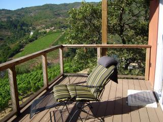 Sonoma Sunset House-Privacy-Hot Tub- Views - Sonoma vacation rentals